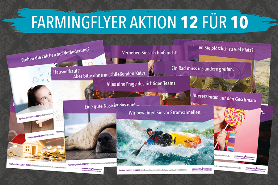 12 Farmingflyer für die Immobilienakquise! (Aktion)